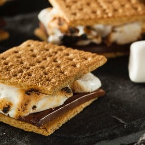 marshmellow smores sandwich from smores party theme Michigan